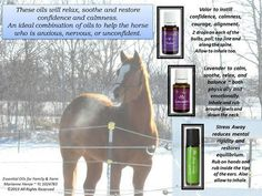 For horses: Relaxes and restore confidence.