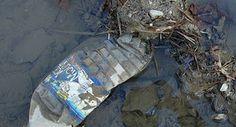Un mouvement anti-bouteille d'eau en plastique prend de l'ampleur aux Etats-Unis!