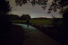 """""""L'Olanda è sempre più all'avanguardia per quanto riguarda le piste ciclabili. Dopo la pista ciclabile per produrre energia con i pannelli solari di cui vi avevamo parlato qualche tempo fa, ecco un nuovo progetto davvero speciale, ispirato a Van Gogh."""""""