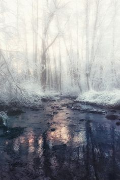 "atraversso: "" Winter's tale  by Yanobninsk10 """