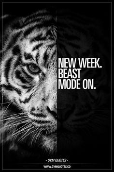 35 Best Beast Mode Quotes Images In 2019 Training Quotes Fit