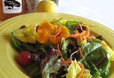 The Top 10 Farm-to-Table Restaurants by epicurious  Tupelo Honey Café  12 College St., Asheville, NC (828-255-4863)