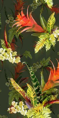 Estampa exclusiva Coletivo Lince @coletivolince www.coletivolince.com.br #coletivolince