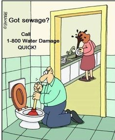 Here are some do's and don'ts to prevent #sewage #backups. DON'T 1: Flush sanitary whips or diapers. 2: Pour grease down kitchen sinks. 3: Plant trees near #sewer lines. DO 1: Have a plumber install a backwater valve on the lowest drain line. 2: Check your homeowners insurance policy. If you are not covered for back-ups, call your agent for information.  In case your home or business has sewage backup call 1-800-Water Damage of WNC. Reach us at (828)-398-4027