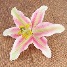 Stargazer Lilies gumpaste Sugarflowers perfect for cake decorating fondant cakes and wedding cakes. | CaljavaOnline.com