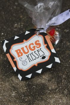 Bug themed birthday party goody bags...filled with plastic bugs and Hershey Kisses!