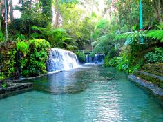 The Best All-Inclusive Resorts in San Pablo, Laguna to Visit this Summer Best All Inclusive Resorts, Happy Summer, The Best, Waterfall, San, Travel, Outdoor, Outdoors, Viajes