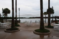 A reception at the Summerhouse at Disney's Grand Floridian Resort?