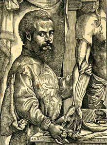 Andreas Vesalius (31 December 1514 – 15 October 1564) was an anatomist, physician, and author of one of the most influential books on human anatomy, De humani corporis fabrica (On the Fabric of the Human Body). Vesalius is often referred to as the founder of modern human anatomy.