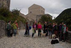 Alla prossima amici dog walker, per andare alla scoperta del Friuli Venezia Giulia con il nostro 4 zampe!