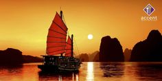 Boat at Sunrise in Ha Long Bay Vietnam Wallpaper Vietnam Tours, Vietnam Travel, Hanoi Vietnam, Asia Travel, Laos, 1 Day Trip, Share Pictures, Vietnam Voyage, Ha Long Bay