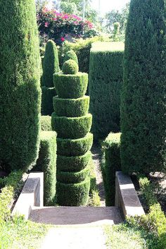 i love topiaries