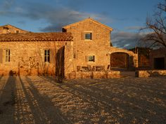 the soft sun of winter in Provence