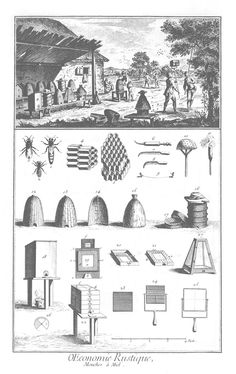 a page from The Encyclopdie...