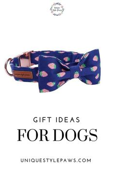 Damask Dog Collar With Blue Bow Size XS-L by Doogie Couture JUST A FEW LEFT