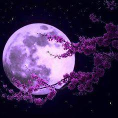 Un espacio para el Alma......: Efectos de la luna llena del 14 de noviembre y cóm...