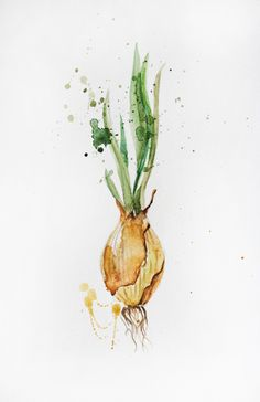 Original Watercolor Painting, Green Onions, Organic Vegetables, Kitchen decor, Botanical Home decor, Onion Art, Onions decorations hall OOAK by MaryArtStudio on Etsy