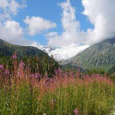 #osttirol #innergschlöß #großvenediger #matreiinosttirol #beautifulmountains #biglove #flowers #summertime #summer2012 #hiking #withmyfamily #nofilter #happygirl #gletscherweg