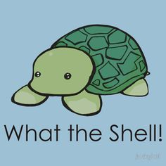 What the Shell! (Pun)
