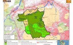 O mosaico de áreas protegidas da Terra do Meio, com aproximadamente 8,5 milhões de hectares, entre os rios Xingu e Iriri, abriga uma enorme diversidade socioambiental e é um importante elemento de proteção do território, que sofre intensa pressão de desmatamento, retirada de madeira ilegal, construção de estradas e hidrelétricas.