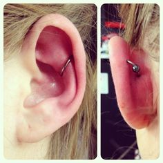Piercing by EmVee at Seven Sins Tattoo Horley, UK #piercing #piercings #bodymodification #bodymodifications #bodypiercing #bodypiercings #bodymod #pierced #pierce #sevensinstattoo #horley #EmVee #rook #orbital #conch #conchorbital #brc #hoop