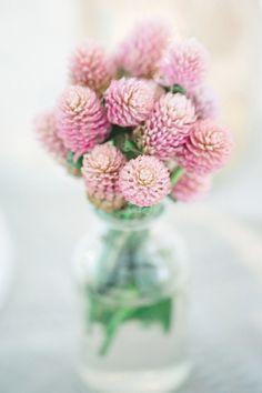 Unique pink flowers