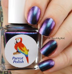 Parrot Polish Northern Sky Lights | Be Happy And Buy Polish https://behappyandbuypolish.com/2017/05/08/parrot-polish-multichrome-madness-nail-polish-trio-oil-spill-nail-art/
