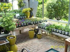 Avant Grade Annuals at Lake St Louis Garden Center- St Louis, MO  Mixing pots with plants in displays
