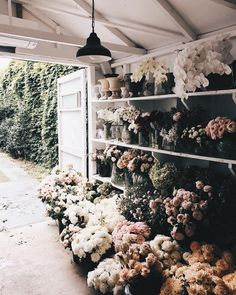 Awesome Florist Shop Design and Decor Ideas 21 - Awesome Indoor & Outdoor Flower Farm, My Flower, Wild Flowers, Beautiful Flowers, Fresh Flowers, Spring Flowers, Art Flowers, Vintage Flowers, Colorful Flowers