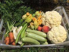 Vendita casette con mix di frutta e ortaggi di stagione Zucchini, Vegetables, Shop, Summer Squash, Veggie Food, Vegetable Recipes, Store, Veggies