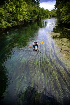 Things to do in San Marcos TX Clear Kayak Tours Kayaking San Marcos River Texas Tourism, Texas Travel, Places To Travel, Places To See, Glass Bottom Boat, Adventurous Things To Do, Kayak Tours, Adventure Is Out There, Adventure Time