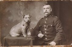 Victorian police dog