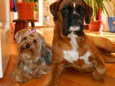 Kaya con Lilifee
