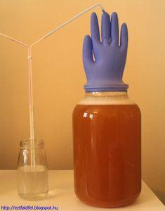 Ezt fald fel!: Csipkebogyó-galagonya házi bor - csipkebogyóbor Minion, Blog, Minions, Blogging