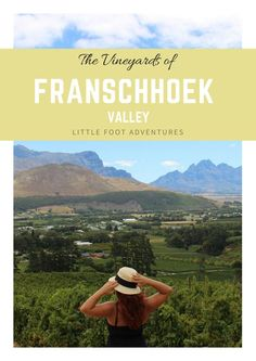 South Africa is world known by its vineyards. The quality and unique flavour of the wine produced is one of the reasons people visit Franschhoek.