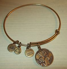 Alex & Ani sister bracelet with Charms - http://designerjewelrygalleria.com/alex-ani/alex-ani-sister-bracelet-with-charms/