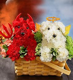 Devil Dog, Angel Dog™ arrangement from 1800flowers.com. Send one to me, please :)