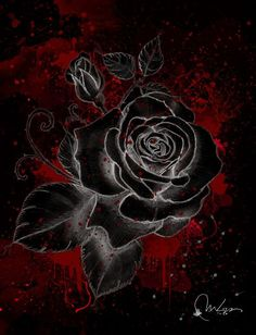 Black Wallpaper: Black Rose Art Print by Marine Loup:: Black wallpaper is an android app for phon… Black Roses Wallpaper, Gothic Wallpaper, Cute Wallpaper Backgrounds, Flower Backgrounds, Flower Wallpaper, Iphone Backgrounds, Iphone Wallpapers, Beautiful Flowers Wallpapers, Beautiful Rose Flowers