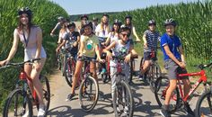 ✅ In vara aceasta mergem in tabara! Este momentul ca viata copiilor nostri sa revina la normal, la socializare, prietenii si intalniri reale! Astfel, Mara Study vine cu o prima propunere! 🟡 Tabara de grup in Germania, la Bad Schussenried! 🤳 0736 913 866 Bad Schussenried, Germania, Bicycle, Bike, Bicycle Kick, Bicycles