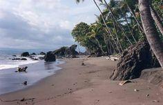 Pavones Beach