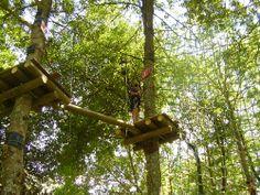 Besoin d'aventure? Partez en pleine nature au sein d'une forêt gigantesque pour une expérience exceptionnelle avec la Forêt de Robin!