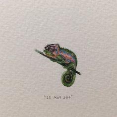 Day 142: Cape Dwarf Chameleon | Bradypodion Pumilum. 22 x 21mm. #365postcardsforants #miniature #watercolour #wdc624 #chameleon #capedwarfchameleon #capetown  #nature  (at Somerset West, Cape Town)
