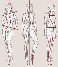 Drawing Female Body, Body Reference Drawing, Drawing Body Poses, Art Reference Poses, Drawing Faces, Pants Drawing, Anatomy Sketches, Anatomy Art, Anatomy Drawing