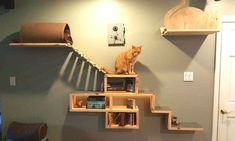 It Looks Like A Bookshelf. When I See The Rest Of The Wall? My Cat Would LOVE This! Posted from Littlethings.com #catsdiyshelves