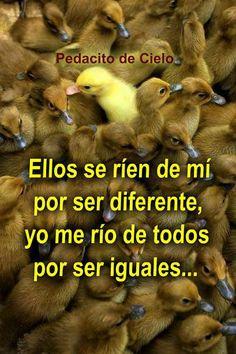 Deja de ser como los demás y se diferente! Cambia tu vida