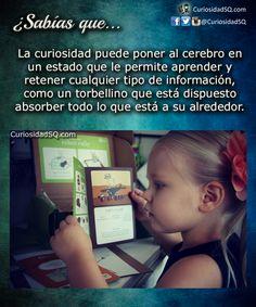 ¿Sabías que?: La curiosidad transforma tu cerebro.