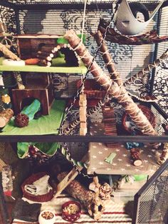 Rat cage, critter nation, green and brown theme