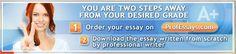 Order Custom Essays