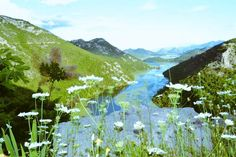 (2) #MontenegroAdventures - Twitter Search