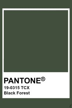 Pantone Black Forest - Act Pantone Verde, Paleta Pantone, Pantone Tcx, Pantone Swatches, Color Swatches, Pantone Colour Palettes, Pantone Color, Colour Pallete, Colour Schemes
